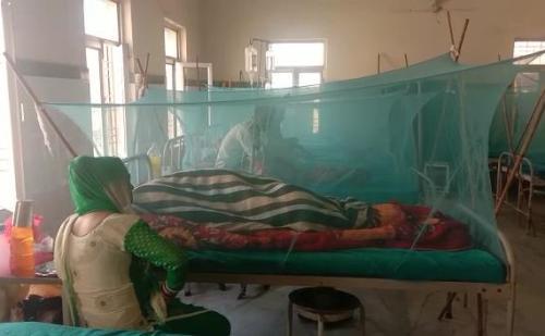 सरकार के प्रयासों की पोल खोलता डेंगू का कहर, बढ़ती जा रही डेंगू के मरीजों की संख्या