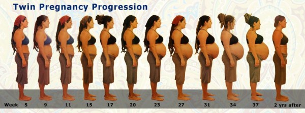 Pregnant with Twins week by week