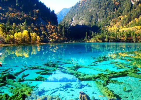 غابة وادي جيوتشاي، الصين