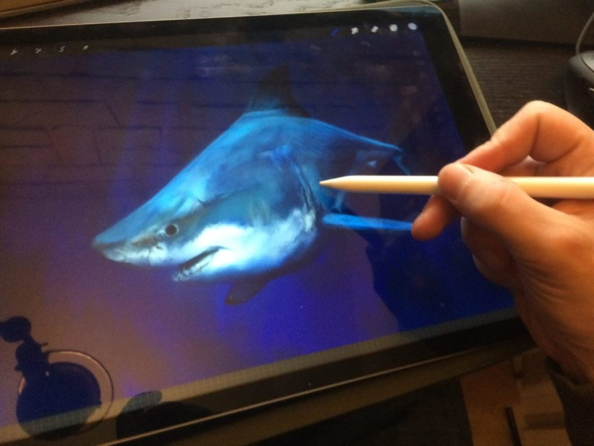 12-requin-ipad-mko