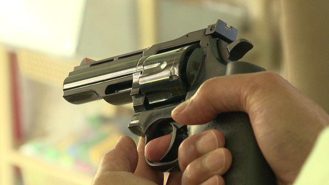 gun firearm_80198