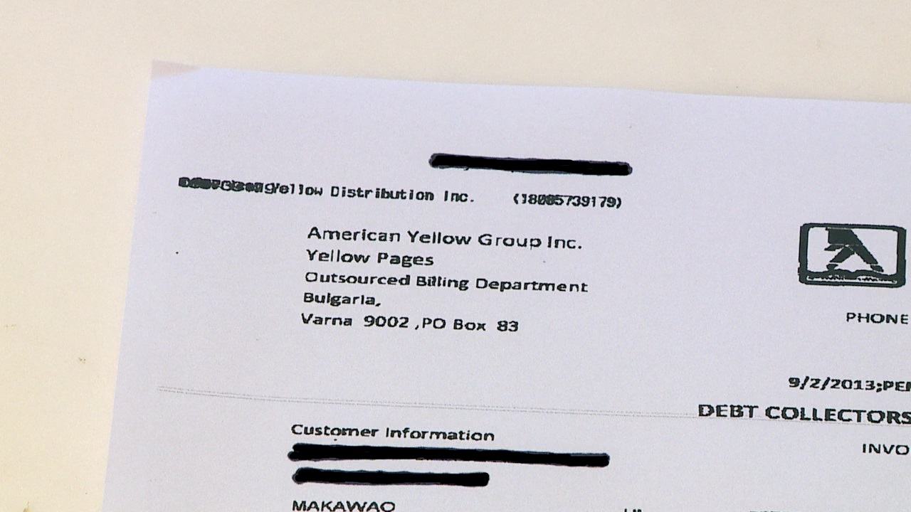 american yellow pages scheme 2_86206