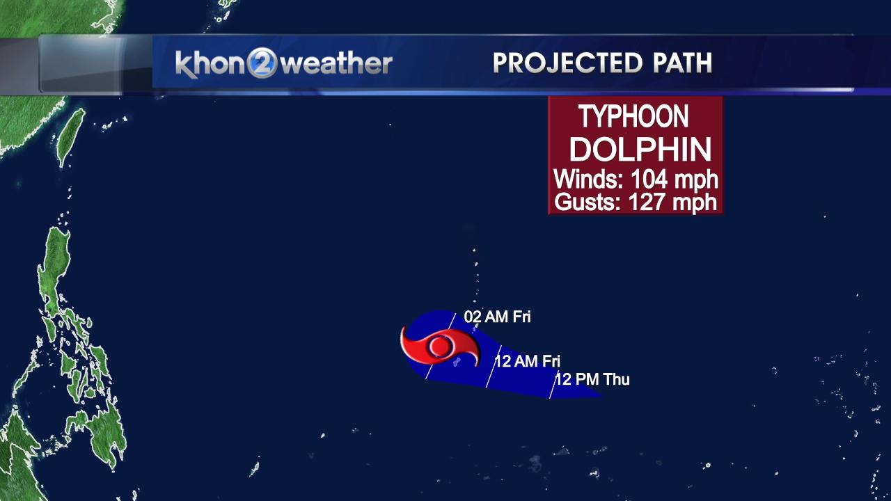 5-13 typhoon dolphin_94620