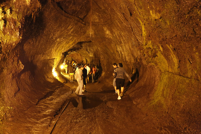 Thurston Lava Röhre, Hawaii Volcanoes Nationalpark_108031