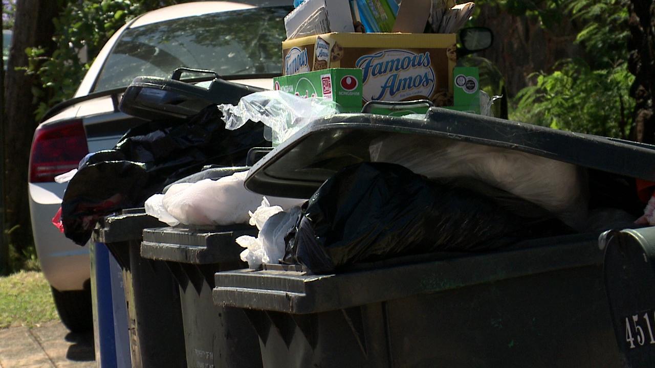 overflowing trash bins_131961