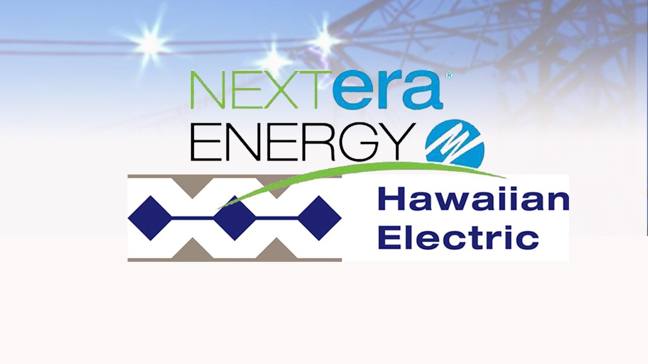 NEXTERA ENERGY HECO HAWAIIAN ELECTRIC full_116779