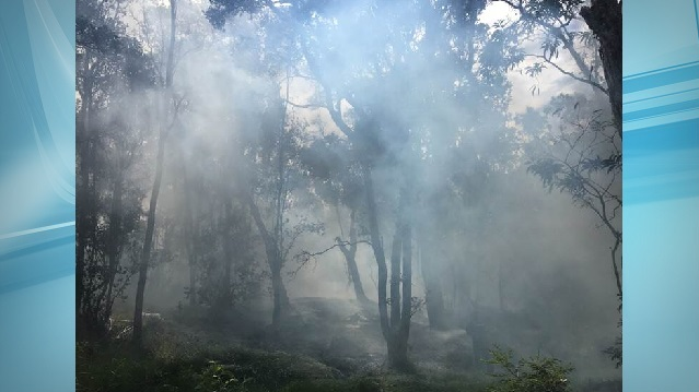 hawaii volcanoes national park campground fire_215922