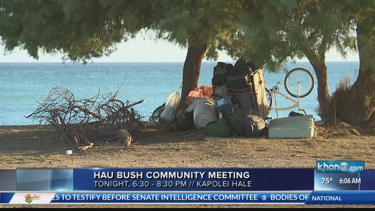 Town Hall Meeting will discuss the future for One'Ula Beach Park