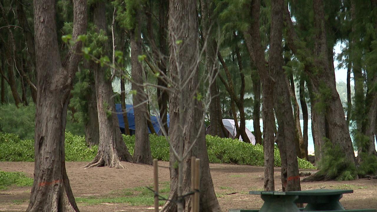 sherwoods campsite_115239