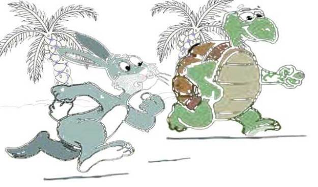 rabbit-and-the-turtle