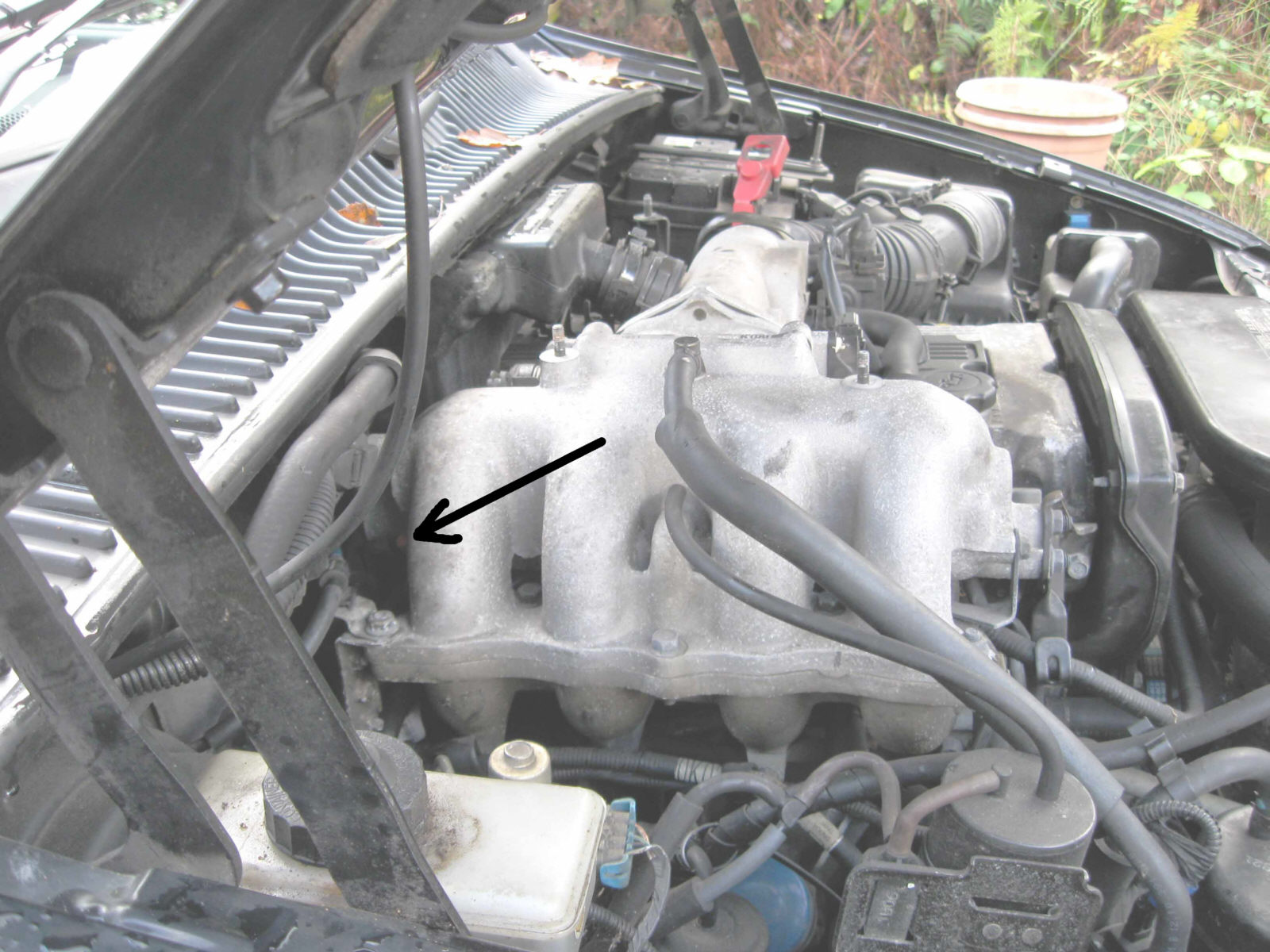 hight resolution of 2002 kia spectra engine diagram wiring diagram 2007 kia sportage engine diagram index listing of wiring