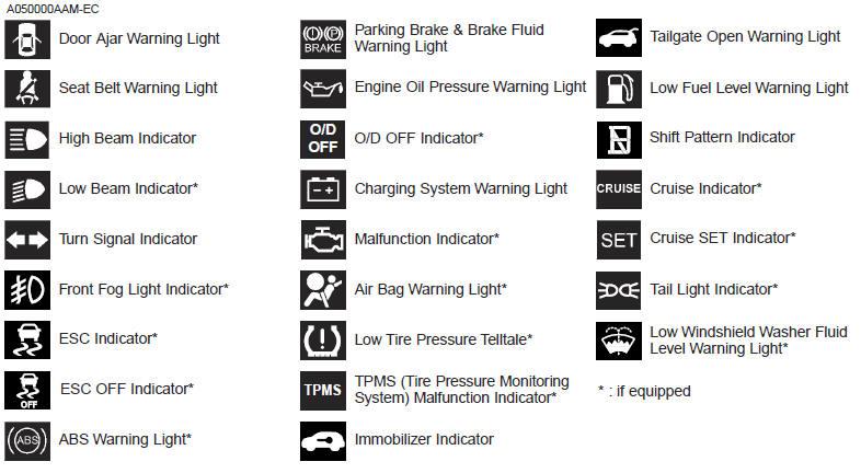isuzu truck warning light meanings