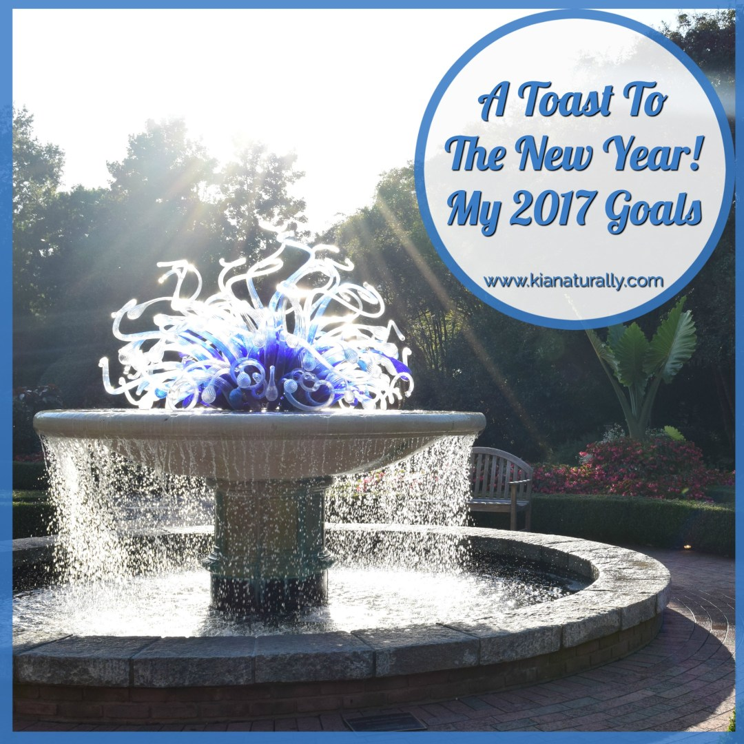 A Toast To The New Year! My 2017 Goals - www.kianaturally.com