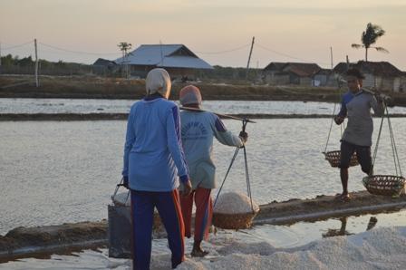 Bukan Zamannya Indonesia Impor dan Sengsarakan Petambak Garam