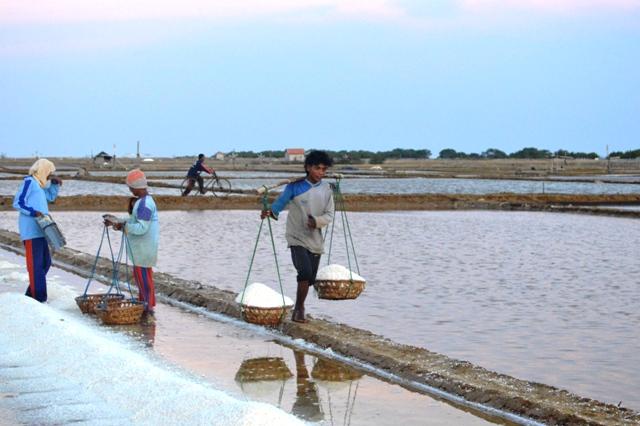 Krisis Garam, Perkuat Impor Belum Selesaikan Masalah