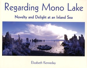 Regarding Mono Lake