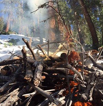 Crews Burning Piles Today Near June Lake