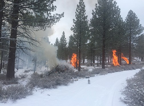 Mono County Controlled burn Today