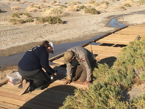 Salt Creek Boardwalk and All Campgrounds Open