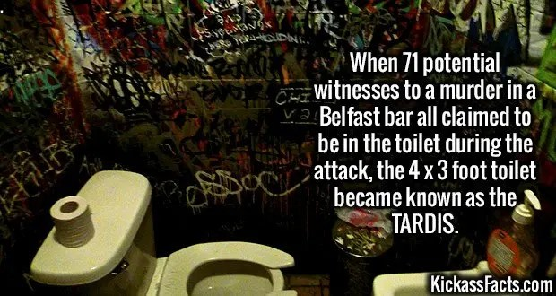 2248 Tardis Toilet-When 71 potential witnesses to a murder in a Belfast bar all claimed to be in the toilet during the attack, the 4 x 3 foot toilet became known as the TARDIS.