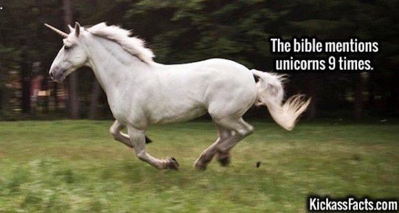 2686 Unicorns-The bible mentions unicorns 9 times.