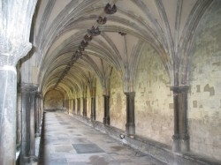 The cloisters are impressive at Norwich Cathedral