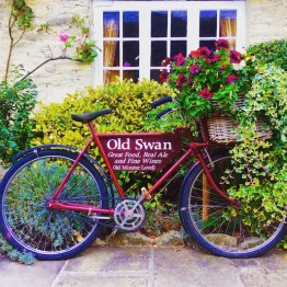 a pashley bike with a basket and flowers