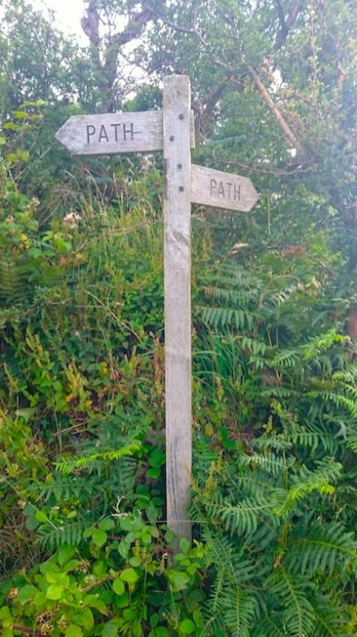 signposts saying path pointing two ways