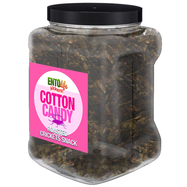 Jar 1lb Crickets Cotton Candy Flavor