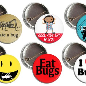 Entomophagy Bug Buttons