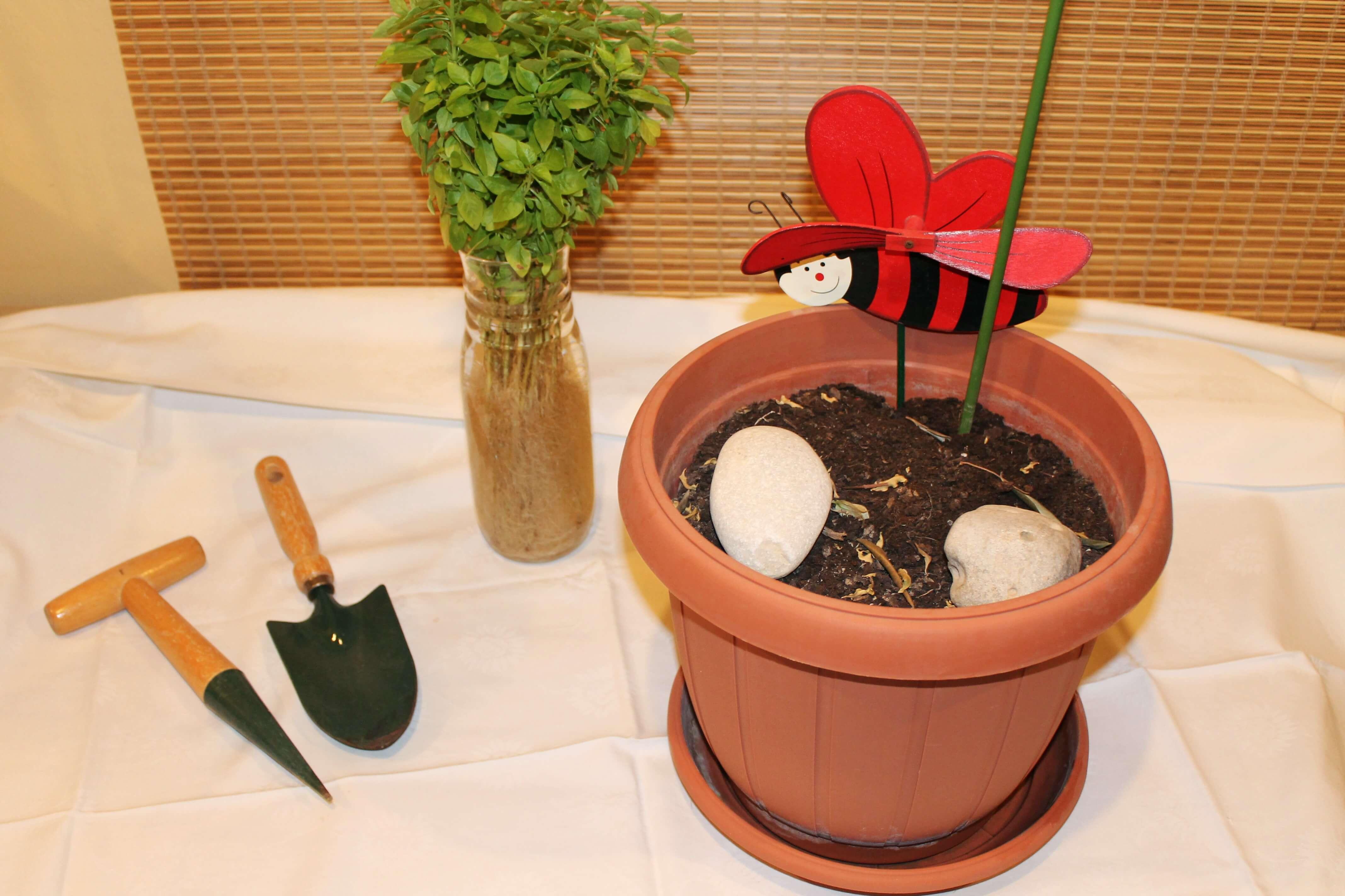planting-basil