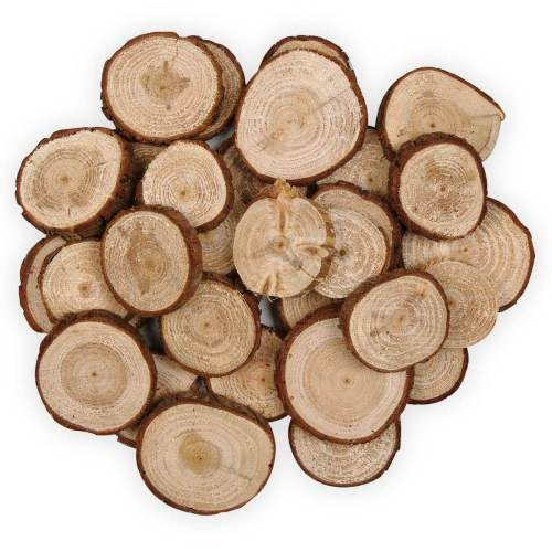 Pine tree craft wood slices | Jumbo