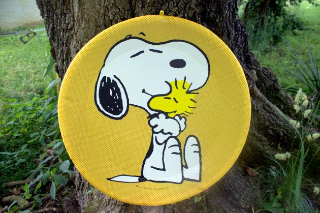 peanuts summer fun