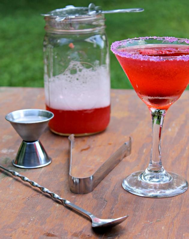 Raspberry Cosmopolitan Martini Recipe Supplies