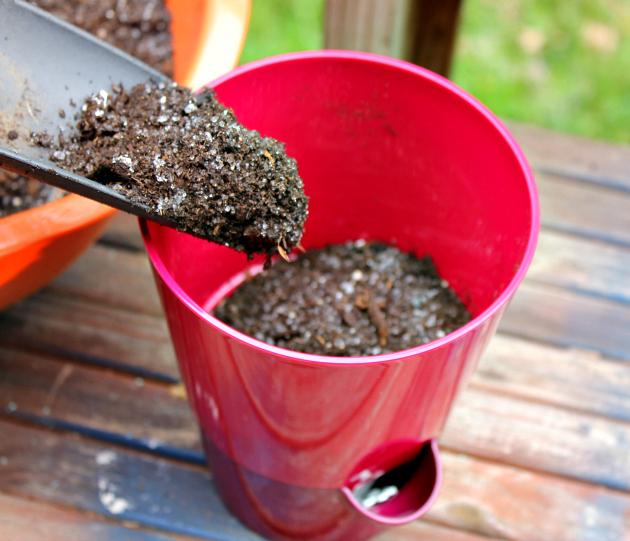 Hacks For Starting An Herb Garden planter