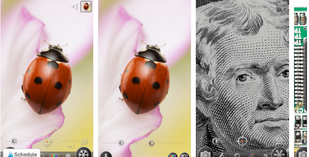 magnifier How To Take Brilliant Photos With Your Smartphone Camera