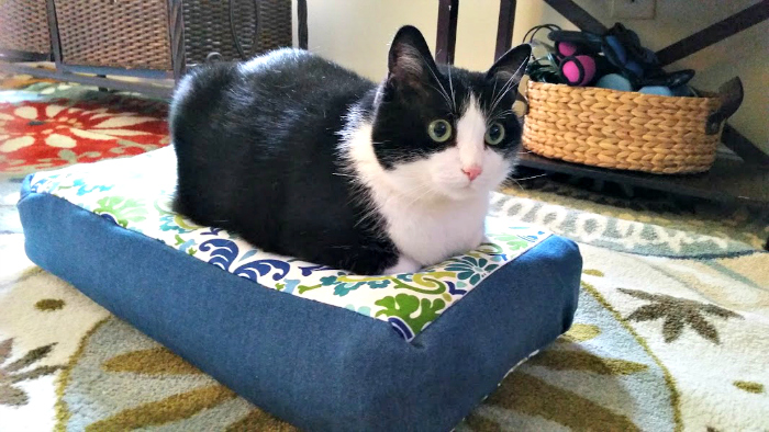 how to sew your own easy to make diy cat bed