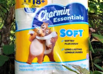Five Reasons I Made The Swap To Charmin Essentials Soft