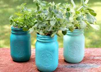 DIY Ombre Painted Mason Jar Planters Craft