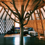 Warts And All Airbnb Review – What You Need To Know 3