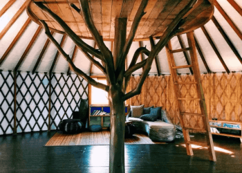 Warts And All Airbnb Review – What You Need To Know