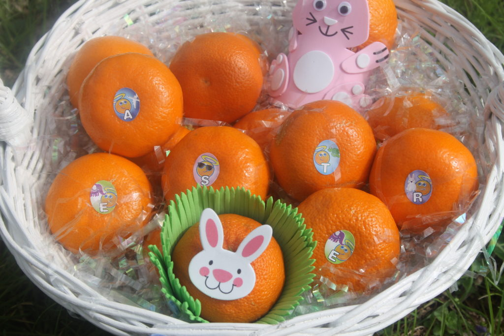 How To Have A Candy Free Easter With Wonderful Halos 3