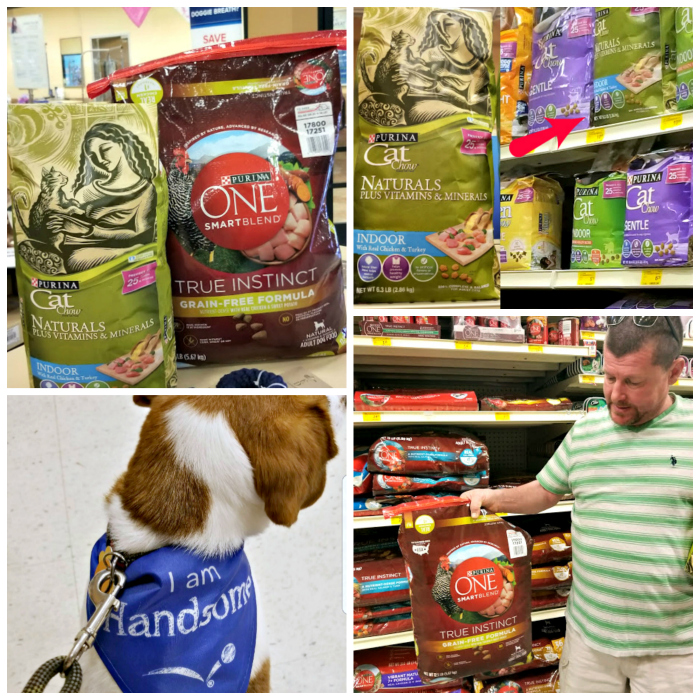 How To Show Your Pets How Much You Love Them in store photo