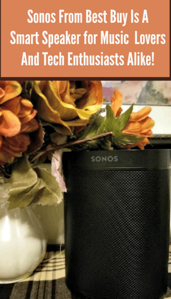 The New Sonos One From Best Buy pin