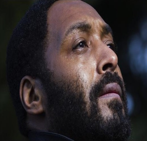 3. Will Julien Temple's Marvin Gaye flick Sexual Healing, starring Jesse L. Martin see completion?