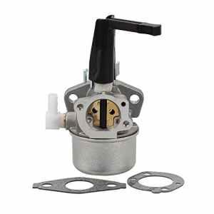 HIPA Carburateur pour Moteur Briggs & Stratton 696065 697422 110412 110402