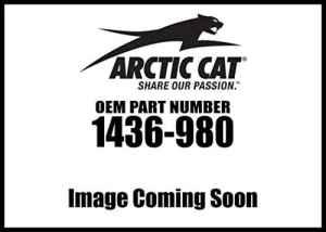 ARCTIC Cat Wildcat Trail/sport Brosse Guard Bumper