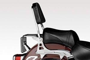 Intruder LC 1500 – Dossier (S-0390) – Sissy Bar – Facile à Installer – Visserie Inclus – Accessoires De Pretto Moto (DPM Race) – 100% Made in Italy