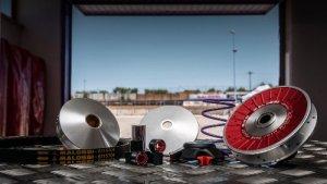 'Matelas MALOSSI MHR pour Overrange Kit m6115780/m6115781, «La Furia Rossa pour Piaggio court/long 50ccm 2T AC/LC 19x 15,5mm, 6rouleaux, 3,8/3,5g,