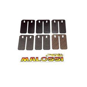 Membranes d'admission MALOSSI Carbon – Gilera-Typhoon 50